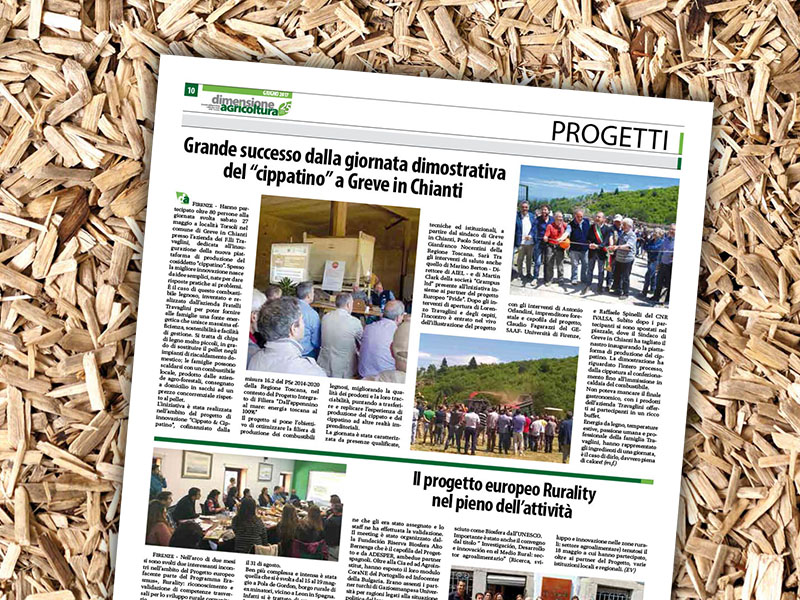 """Il progetto """"Cippato & Cippatino"""" su Dimensione Agricoltura di giugno 2017"""