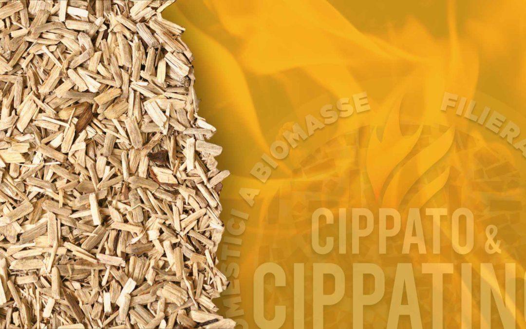 Progetto Cippato & Cippatino – Relazione generale finale
