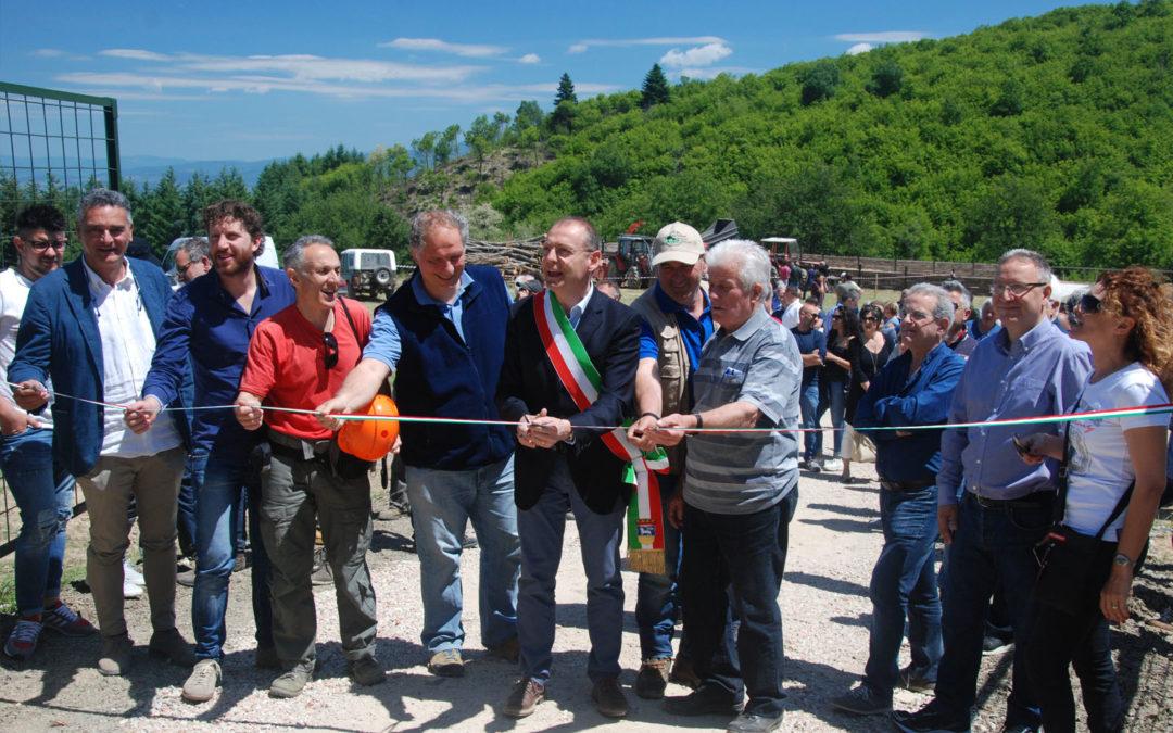 """Grande successo dalla giornata dimostrativa del """"cippatino"""" a Greve in Chianti"""